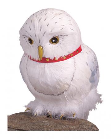 Harry Potter Eule Hedwig