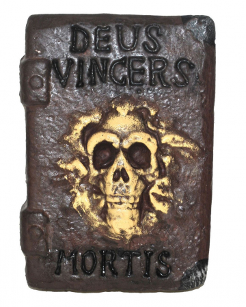 Book Of Witches With Skull