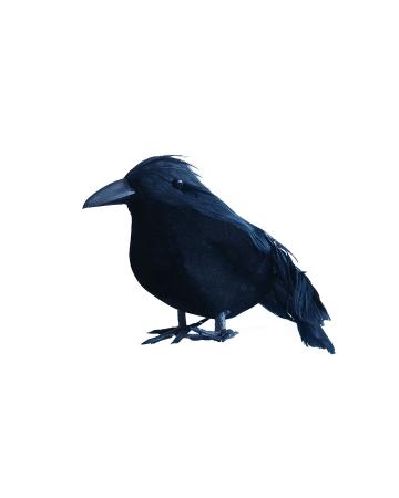 Kleiner schwarzer Rabe 12 cm