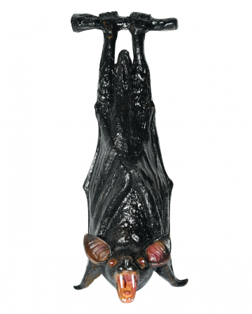 Am Ast hängende Fledermaus 23cm