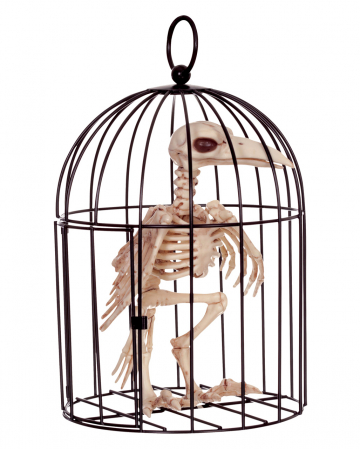 Crows Skeleton In Cage