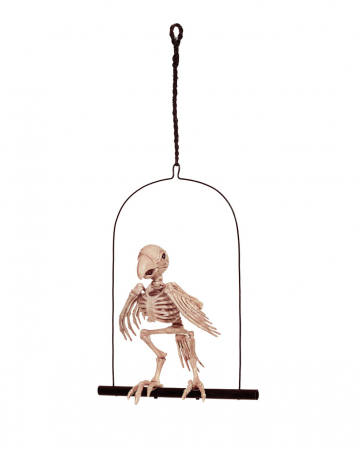 Parrot Skeleton On Swing 32 Cm