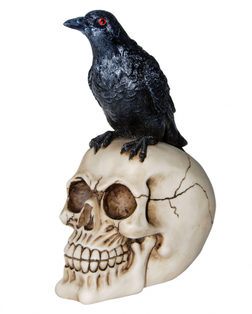 Realistic Skull With Raven