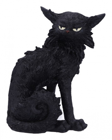 Salem Magierkatze 16,6cm