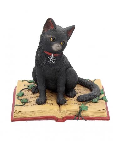 Schwarze Hexenkatze mit Pentagramm
