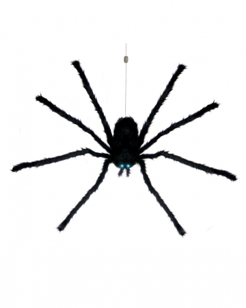 Abseiling Giant Spider