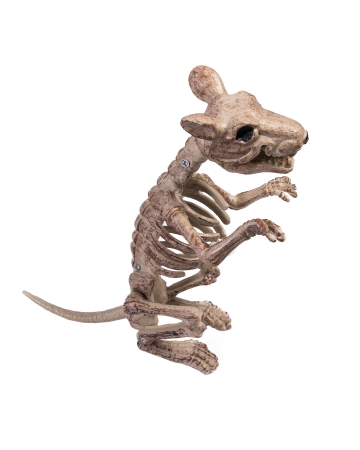 Sitting Skeleton Rat