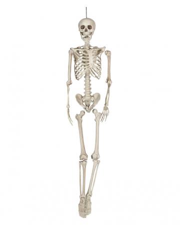 Hängefigur Skelett Torso 160cm
