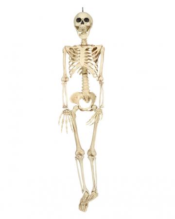 Hängefigur Skelett Torso 90cm