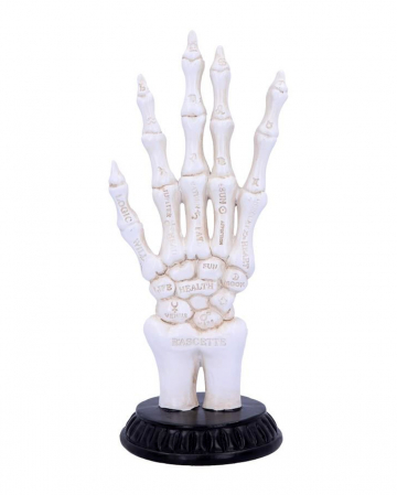 Skeleton Hand With Fortune Telling Symbols