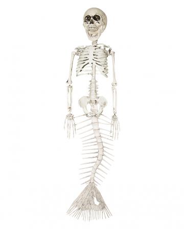 Skelett Meerjungfrau 45cm