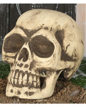 Skull 32cm