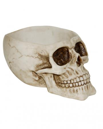 Große Totenkopf Schale mit offenem Schädel