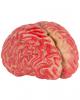 Bloody Brain 15cm - Vinyl