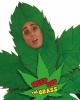 Marihuana Blumentopf Kostüm