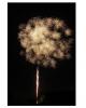 Popping Flowers 13 Schuss Feuerwerk