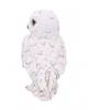 Weiße Schneeeule Statue 13,3cm