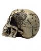 Fantasy Skull With Mystic Pattern