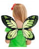 Butterfly Wings Black/green Child Size