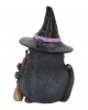 Black Cat With Witch Hat