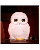 Hedwig Lampe - Harry Potter
