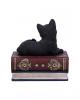 Schwarze Katze auf Hexenbücher Box 11,7cm