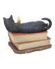 Black Cat With Witch Books 20,5cm