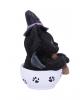 Schwarzes Hexen Kätzchen mit Hexenbesen in Teetasse