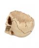 Skull Bowl With Open Skullcap