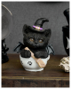 Black Witch Kitten In Teacup