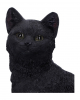 Schwarze Katze auf Totenschädel 24,3cm