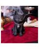 Black Cat Vampuss 16cm
