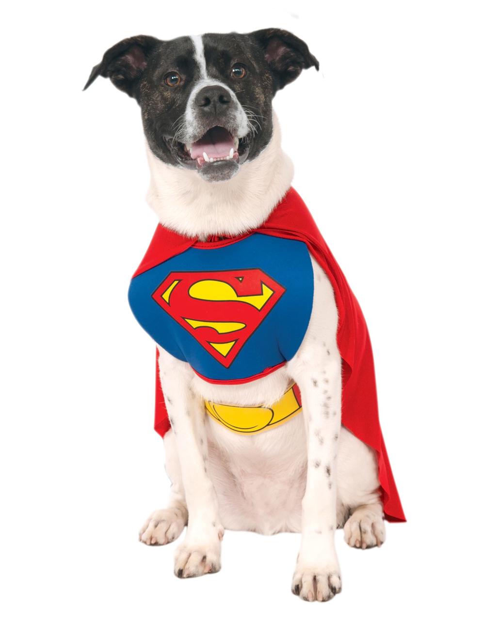 superman hunde kost m m f r fasching karneval universe. Black Bedroom Furniture Sets. Home Design Ideas